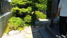 YoroSsamaOutsideMae4.jpg